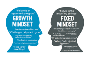 Fixed mindset / growth mindset