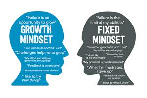 Fixed mindset / growth mindset